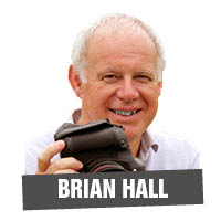 Brian Hall portrait