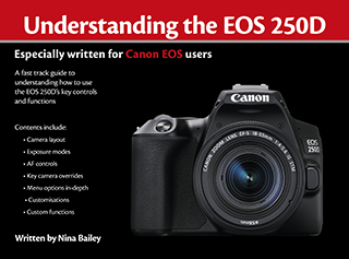 Understanding the EOS 250D