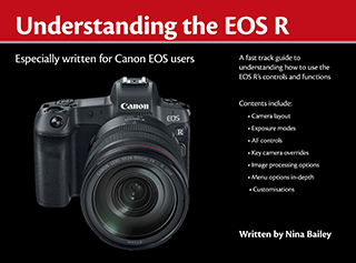 Understanding the EOS R