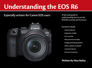Understanding the EOS R6